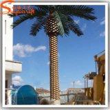 Пальма даты вечнозеленой пальмы оптовых продаж напольная декоративная искусственная
