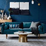 Sofà popolare del tessuto della mobilia del salone di disegno moderno