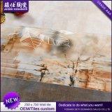 2017 الصين منتوجات قراميد و [بويلدينغ متريل] حارّ يبيع 250*750 خزفيّ جدار قراميد