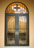 Конструкция обеспеченностью двери входа нутряной ковки чугуна дома орнаментальная
