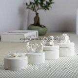 Rectángulo de almacenaje de cerámica blanco de la joyería de diversos modelos (CC-19)