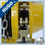 Élévateur à chaînes de l'élévateur à chaînes 2ton de main manuelle Hsz-CD de capacité