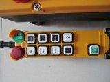 Teledirigido de radio industrial de F24-8d