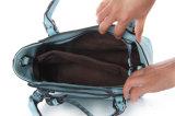 De Zwerfster Handgbags van de Totalisator van de Handtassen van Desinger van de manier (ldb-016)