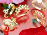 Stehende Armband-Armband-Platin-Schmucksachen Inbulit Kühler-Platin-Goldsilber-Schmucksache-Laser-Punktschweissen-Maschinen-FO-Rring