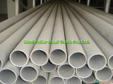 PVC Coated를 가진 AISI 316 Stainless Steel Pipe 또는 Tube