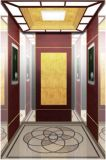 Подъем Hl-X-016 лифта подъема лифта пассажира селитебный