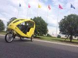 Het reizen van de Elektrische Taxi van Pedicab Tuk Tuk Volo (300K-06)