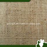 Paño natural del sisal del paño del grado del Ug (tela) de China
