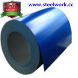 PPGI/PPGL/Gi/Gl ha galvanizzato la bobina d'acciaio ricoperta colore (CC-11)