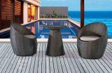 Silla de la rota y muebles al aire libre del jardín de vector de té