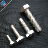 Aço inoxidável 304/316 de parafuso
