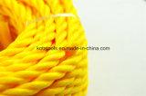 веревочка стренги веревочки 3 упаковки PE 15m Twisted
