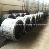 Correia transportadora do PVC/cercar de transtorte de borracha da correia/PVC