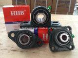 Unités de roulement (UCP X06) Hhb
