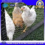 Engranzamento sextavado revestido galvanizado da galinha do engranzamento de fio do PVC