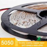 온난한 실내 12V 5m 또는 White/RGB 두 배 편들어진 스티키 테이프 LED 지구 빛 장비