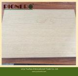 classe excelente da madeira compensada da cereja de 12mm América para o mercado de América