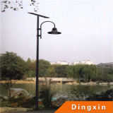 3.5m LED Solar Garden Street Light (DXSGL-021)