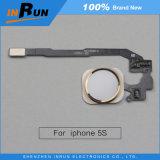 5s steuern Taste für iPhone 5s automatisch an