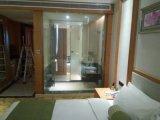 Porte en verre de douche d'intimité, glace permutable sèche, glace intelligente, obscurcissant la glace, glace sèche incurvée