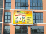 Outdoor Advertizing를 위한 P8 DIP Full Color Electronic Display