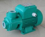 0.5 HP Qb60 정원 물분사 펌프