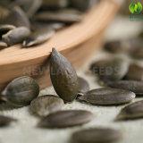 ヨーロッパへの中国の緑食糧GwsのカボチャシードAA