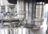 завод питьевой воды бутылки любимчика 1000-20000bph заполняя