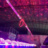 Lumière laser magique de Noël de boule de cosmos de DEL