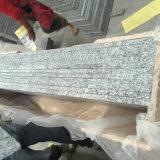 Luz - peitoris cinzentos do indicador do granito na venda