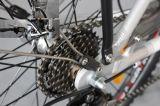 Heiße Verkaufs-Stadt-elektrisches Fahrrad mit Cer für Frau (JSL-038A)