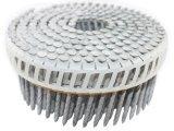 Vite chiodi luminosi della bobina di 50mm x di 2.5