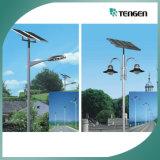 Luz de calle solar de la potencia LED, luces de calle solares baratas