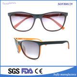 극화된 렌즈를 가진 형식 상표 남녀 공통 플라스틱 색안경
