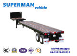 De speciale Flatbed Aanhangwagen van de Container van de Vrachtwagen voor Salse