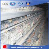 Cage 1000 galvanisée à chaud de couche de poulet d'usine