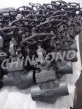 造られた鋼鉄小切手弁の糸またはフランジの接続