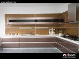 Armário pintado branco da cozinha do lustro elevado do projeto de Morden