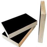 O preto/película de Brown enfrentou a madeira compensada para a construção