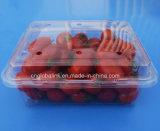 Коробка волдыря Clamshelsl упаковывая на томаты плодоовощ 500 грамм
