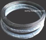 Alambre de tungsteno estupendo de la calidad, tornillo del tungsteno, filamento del tungsteno