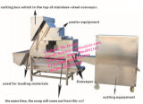 Sbucciatrice automatica della cipolla con il taglio e la rimozione di radice