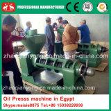 Neue grosse Kokosnussöl-Presse der Kapazitäts-25-30t, Öl-Extraktionmaschine