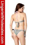 """Biquini """"sexy"""" das senhoras consideravelmente no Swimwear do Bandeau da cabeçada do teste padrão"""