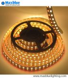 RGBW Rgbww Double Row DEL Strip Light 120/144LEDs/M