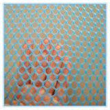 Maille métallique en plastique / réseau plat en plastique