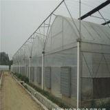 Самый дешевый парник пленки земледелия в Multi пяди с системой вентиляции