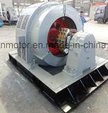 大型の高圧3-Phase非同期モーターシリーズYr (開タイプ)