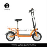 市道のための電気Raycoolのスクーター300Wブラシレスモーター25km/H